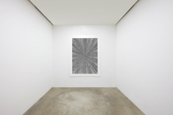 06. Alexandra Roozen, Installation View, 2017