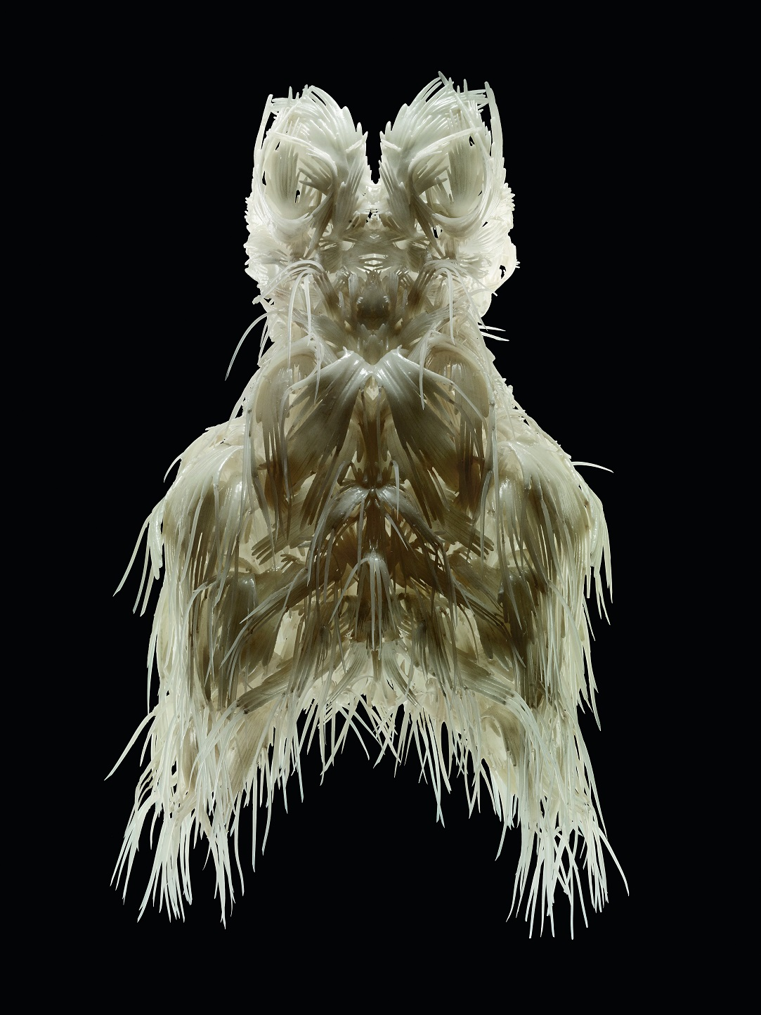 Iris van Herpen (Dutch, born 1984), Biopiracy, Dress, March 2014. 3D-printed TPU 92A-1, silicon coating. Collection of Phoenix Museum of Art. Gift of Arizona Costume Institute. Photo by Bart Oomes, No 6 Studios. © Iris van Herpen.
