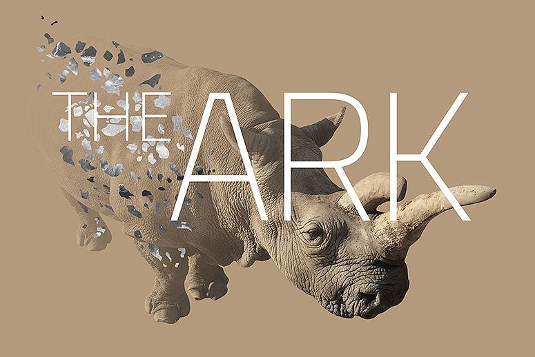 The Ark, Courtesy of the Artists.