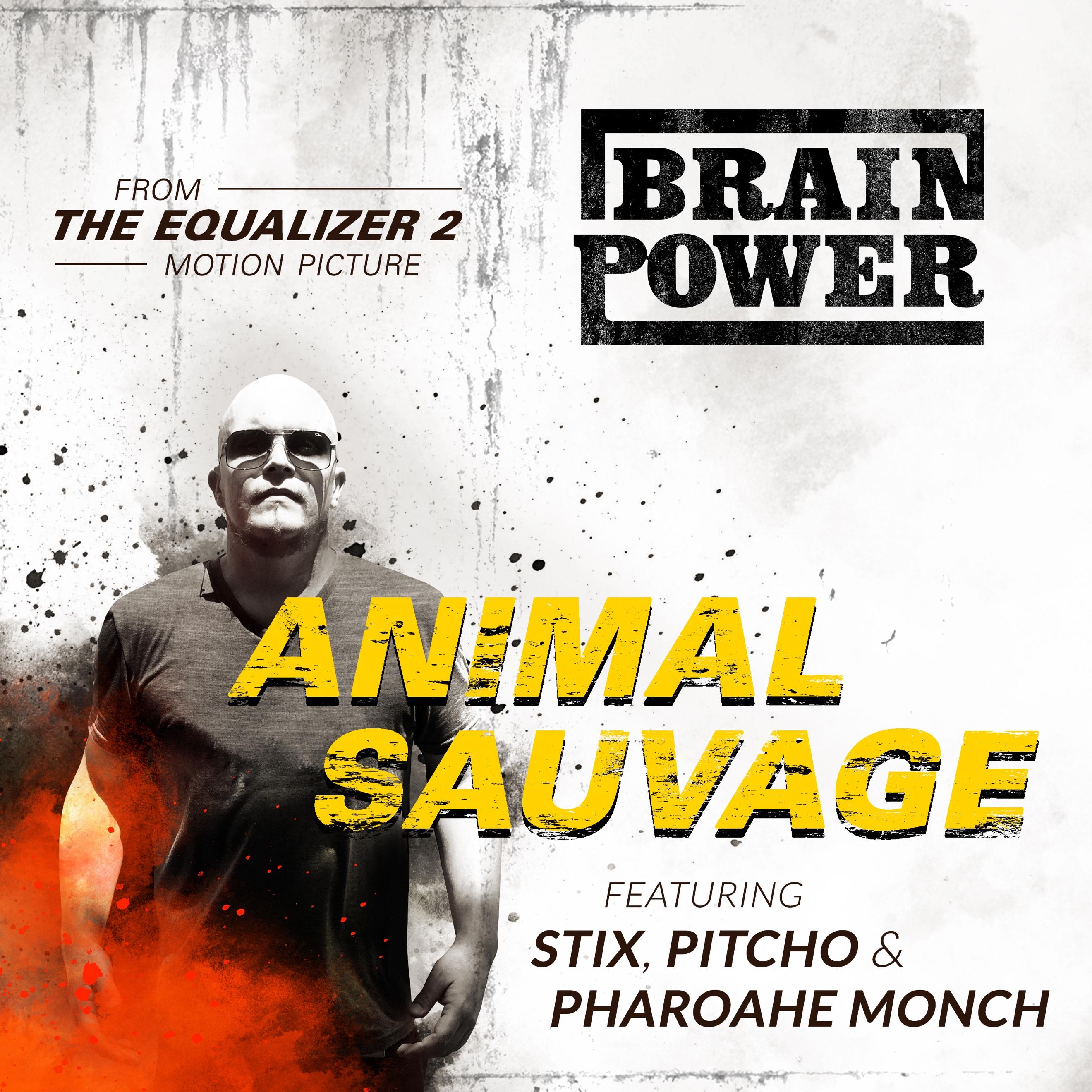Animal Sauvage
