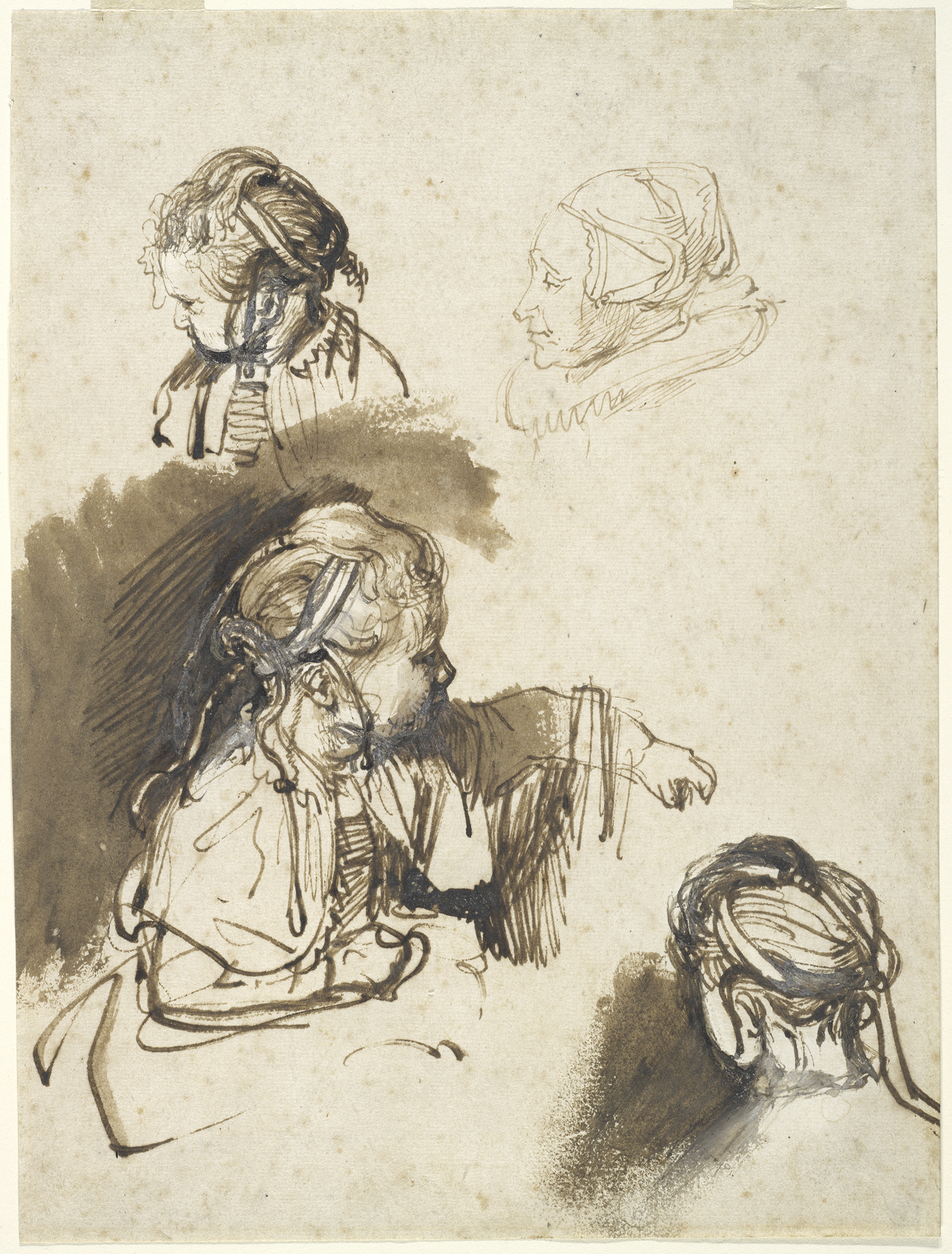 Rembrandt Harmensz. van Rijn, Three Studies of a Child and One of a Woman, c. 1638–40. Brown ink, brown wash, and white opaque watercolor. Harvard Art Museums/Fogg Museum, Gift of Meta and Paul J. Sachs, 1949.4. Photo: Harvard Art Museums, © President and Fellows of Harvard College.