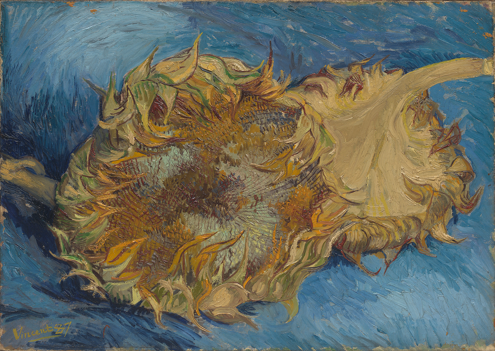 Sunflowers, 1887, Vincent van Gogh