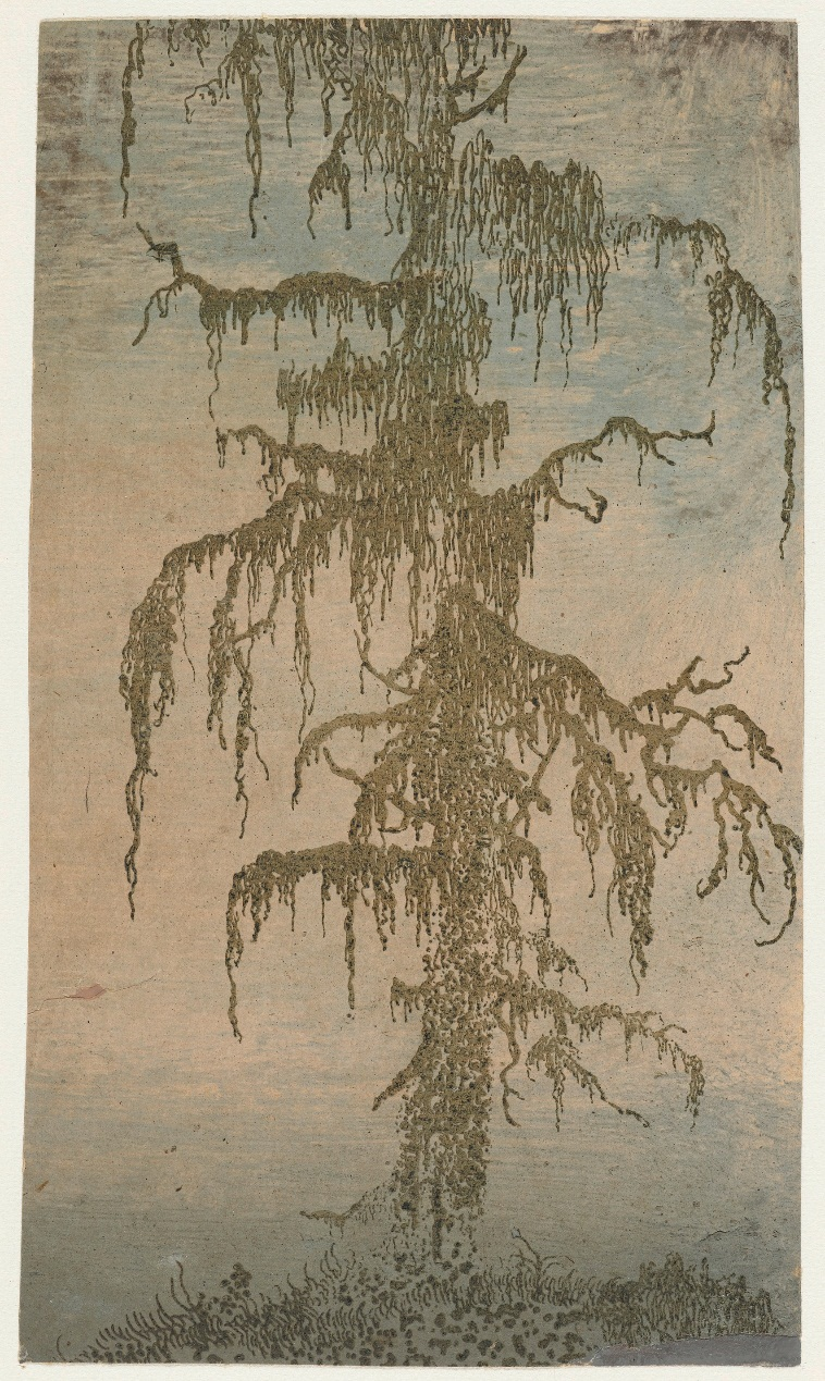 Hercules Segers, (Dutch, ca. 1590–ca. 1638). The Mossy Tree, ca. 1625-30. Lift ground etching printed in green, on a light pink ground, colored with brush; unique impression. Rijksmuseum, Amsterdam; on loan from the City of Amsterdam, collection Michiel Hinloopen (1619–1708), 1885.